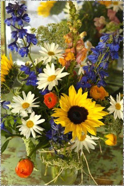 Wildflowerlg